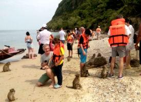 Sea-Cret boottocht -ontdek echt mooie plekjes op zee