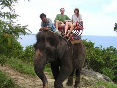 olifanten rit in huahin