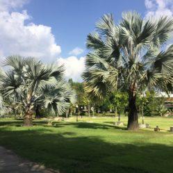 Chiangmai Villa Vakantie accommodatie