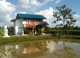 Homestay in Chiangmai