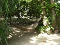 Tropicana Resort Koh Tao (1).JPG