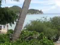 Tropicana Resort Koh Tao (4).JPG