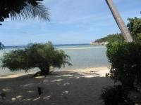 Tropicana Resort Koh Tao (8).JPG