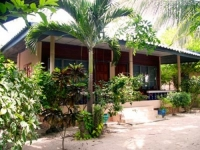 Tropicana Resort Koh Tao (18).jpg
