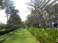 Palm Pavilion Seaview (12).JPG