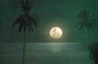 Mond über Phuket.jpg