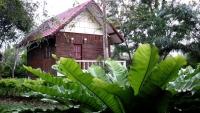 Thai Bamboo Resort Cha-am (17).jpg