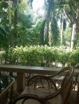Samui Garden Home vakantie bungalows (3).jpg