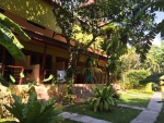 Green Villa Resort voor Koh Samui vakantie (1).jpg