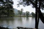 Chiangmai Kinkala (6).jpg