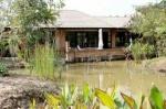 Chiangmai Kinkala (5).jpg