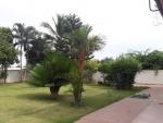 tropicana cha-am garden.jpg