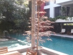 casa deang facilities (1).jpg